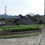 昭和30年頃は播州織が盛んで、当時の工場が いくつも残っています。