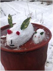 私も張り切って雪ウサギを作ってみました。